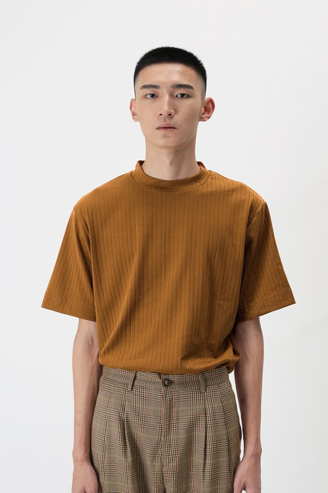 SETH HIGH NECK TOP IN CAMEL